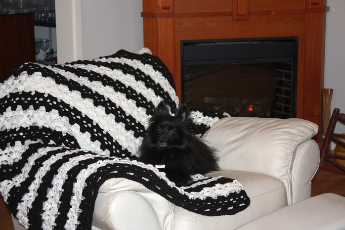 This is the popular Skull Afghan pattern for sale on the Ravelry store.  Percy enjoyed this photo shoot. lol